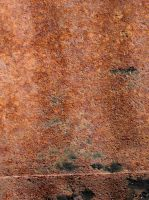 texture 62 rust and mold by i-see-faces