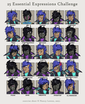 25 Zen Expressions by Cryo-Tech