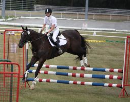 STOCK Showjumping 489 by aussiegal7