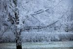 5 Winter in Poland 2014 || AG-foto.pl by e-uphoria