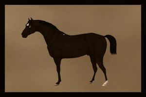 Black Beauty by Citron--Vert
