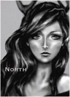 North (SOLD) by PocketRocketART