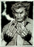 Wolverine Sketch Card by IbraimRoberson