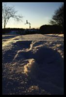 The Snow and Sunset by Codyyy
