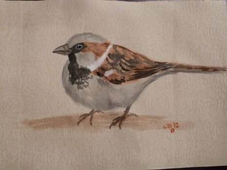 House Sparrow Watercolor by IckyDog