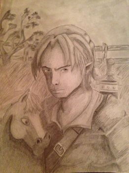 Link and Epona by Howlingwolf246
