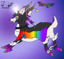 Tanger by DholeSoul