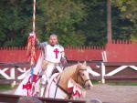 Pa Ren Fair White Knight 3 by RizyuKaizen