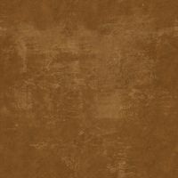 Grungy brown metal. by LANBO