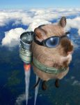 Rocket Gerbil by Pac0daTac0