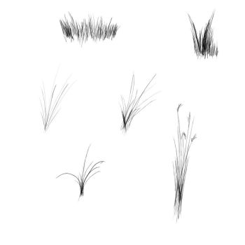 Grass brushes image pack by calthyechild