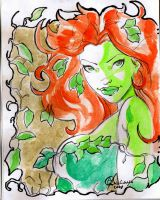 Poison Ivy sketchs by qualano
