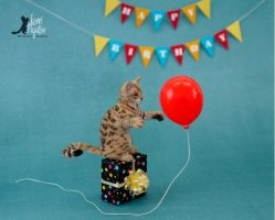 Miniature Bengal Cat Sculpture by Pajutee