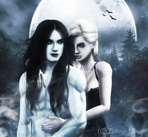 ..::Magic of the Moonlight::.. by Lady-Elizriel