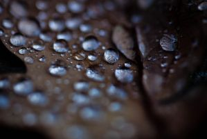 Droplets by Draiocht-651
