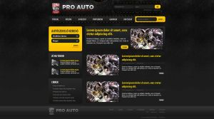 Web Design: ProAuto by VictoryDesign
