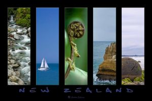 New Zealand redux by anjules