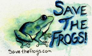 Save the Frogs Entry, Honorable Mention by PonderosaPower