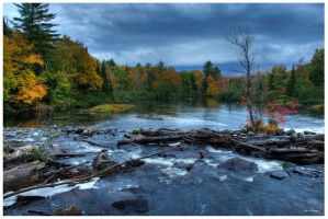 Algonquin 82 by PeterDeBurger