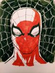 spiderman by diduseevc