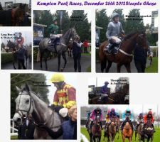 Kempton Park Races - Boxing Day Steeple Chase by XcubX