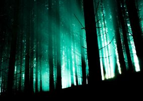 Darkforest1 by moonchild-unveiled