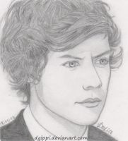 Harry Styles by dgippi4