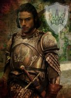 The Kingsguard - Jonothor Darry by LJ-Todd