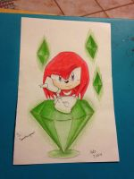 knuckles the echidna by shadamylover1236