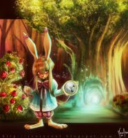 To Wonderland COLOR by MirkAnd89