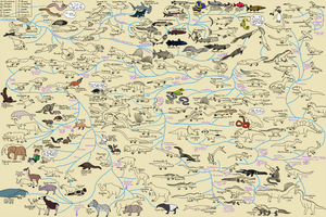 The Cartoon Guide to Vertebrate Evolution by Albertonykus