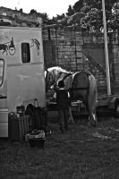 Festival Beaucaire.5/6 by jennystokes
