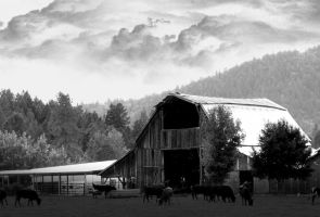 Barn - Rogue River by PeterPawn