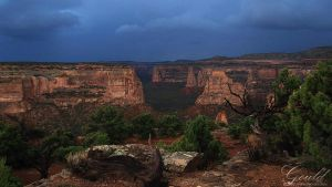Storms In The Canyon by ThisWomanWanders