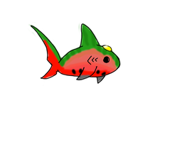 Watermelon Jewel Shark- adopted by Aura-Aquia