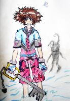 Sora by Someone-that-is-me