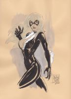 Black Cat sketch by SixGunslinger