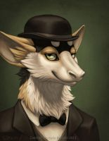 Dapper Portrait by Shadow-Wolf