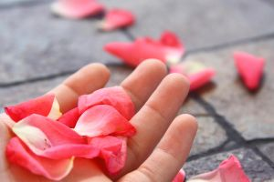 Petals In My Hand by JenniLaSuper