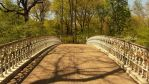 Central Park Bridge by kclemas