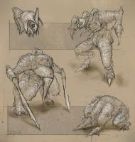 creature sketches by zakforeman