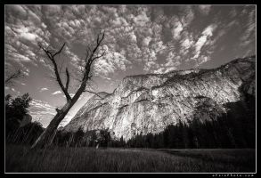 Yosemite Untitled by aFeinPhoto-com