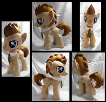 Doctor Whooves Plushie :Commission: by AppleDew