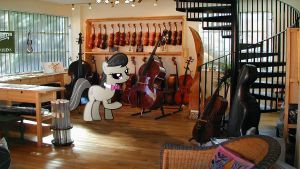 Octavia's Collection by Macgrubor