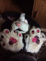 SELLING: Buster Partial by Nikki148