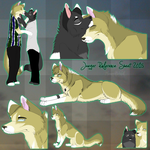 Jaeger Reference Sheet 2015 by MorningAfterWolf