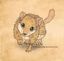 Third Place Contest prize - Gerbil by NezuPanda