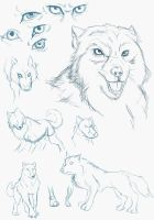 Sketch Dump: Wolves by Everyday-Grind-Comic