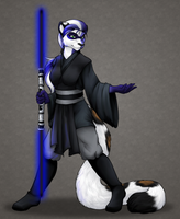 May the 4th Be With You - Nightfeathers by ClemiKinkajou