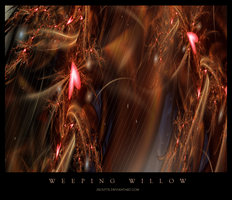 Weeping Willow by zeolyte
